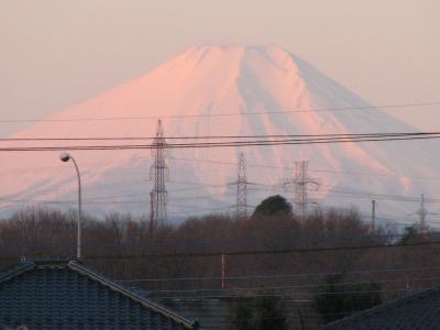 ふじみ野市からの富士山のモルゲンロート