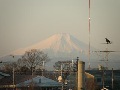 富士山の撮影スポットを追って