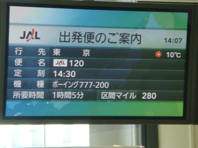 日帰りの伊丹から東京へは