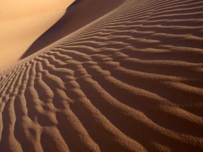 アルジェリアの砂漠1300キロの旅  5 ベニ・アベスの博物館    Beni Abbes, Algeria