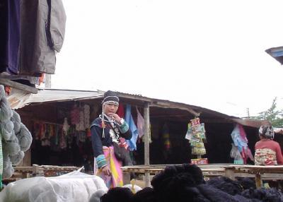北ラオス9: ルアンナムター 「モザイク村」 トレッキング