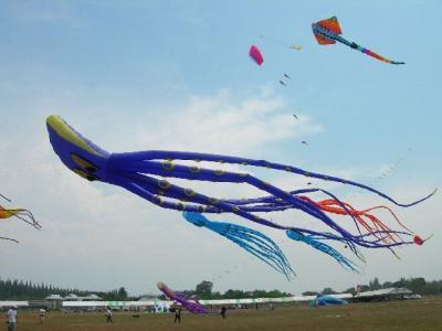 タイ#5<2 チャアム:タイ国際凧揚げ大会>