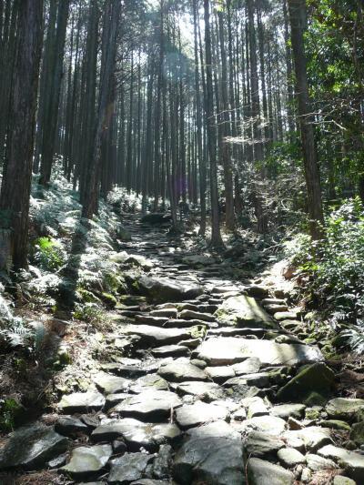 【途中】美しい石畳の上で (熊野古道)