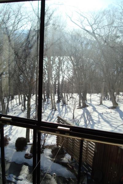 奥日光(2008年2月)