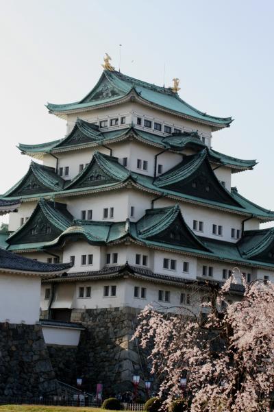 2008春、桜探訪・名古屋城(4:完):4月3日(4):染井吉野、八重紅枝垂れ、天守閣、西南(未申)隅櫓