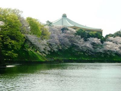 2008.04 桜舞い散る江戸城散歩