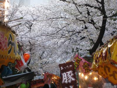 2008春、桜探訪・那古野神社:4月3日:ソメイヨシノ、境内の屋台、桟敷席