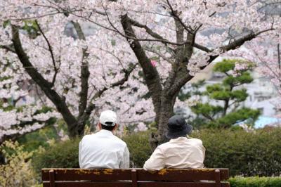 桜・日本百選 日立市