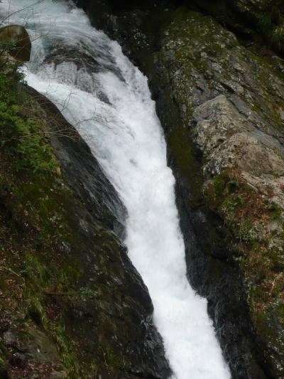 滋賀県の滝紀行◆三の滝(大津市葛川)