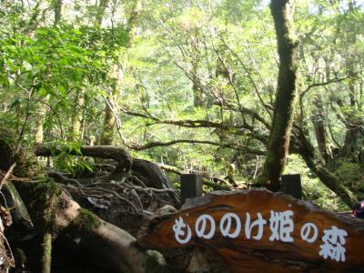 卒業旅行 in 屋久島