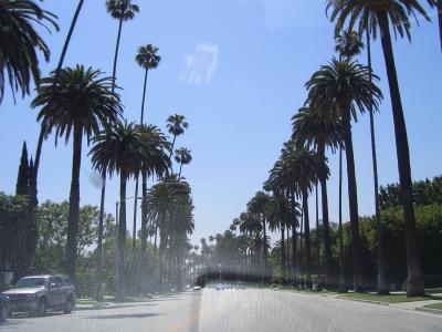 快晴L.A.