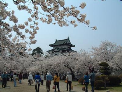 奥の太道 -弘前城公園2008 その1-