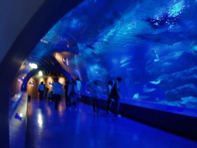 エプソン品川水族館