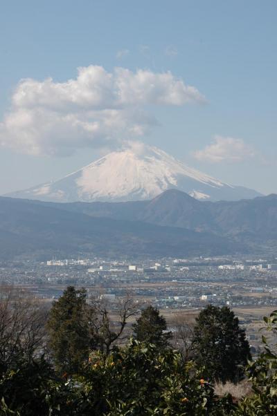 JR東日本 駅からハイキング「流鏑馬と曽我梅林を楽しむ国府津ウォーキング」