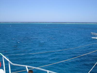紅海の町、ハルガダ14泊15日の旅☆3日目・マルサアラム、ドルフィンハウス