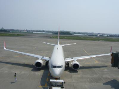 『 高 知 龍 馬 空 港 』
