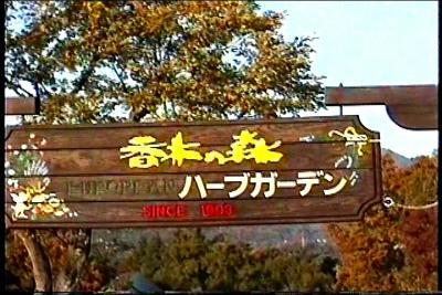島根ー風の国・カナギウエスタン・香木の森(その2)