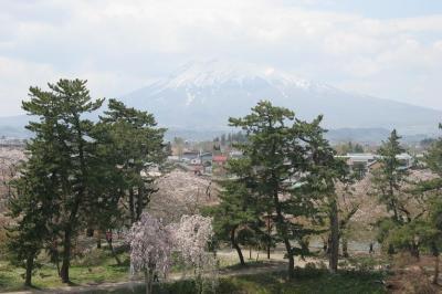 東北の桜を訪ねて 1 (青森)