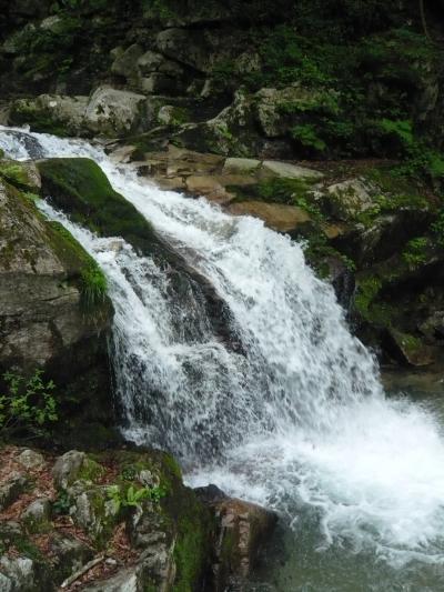 滝紀行◆日本の滝百選 『八ツ淵の滝』(滋賀県高島市)~その①