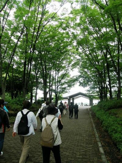 高大OB歩こう会で久喜菖蒲公園へ