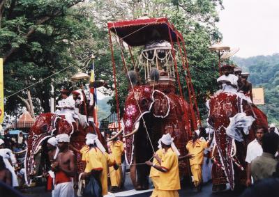 スリランカの旅(4)~キャンディ(ペラヘラ祭・デイパレード)~