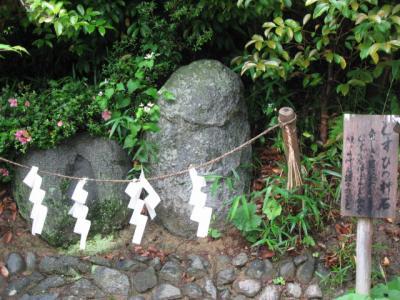 歴史の里・飛鳥へ犬と散歩しに     NARA - Asuka