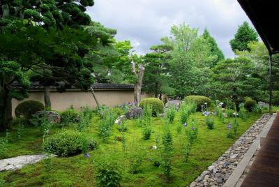 東福寺の塔頭を訪ねて~ 2.天得院