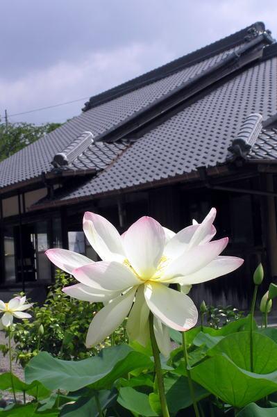 熊野古道中辺路・見松寺