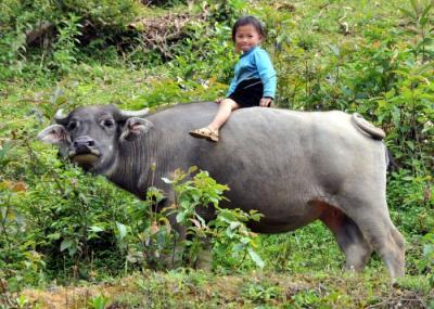 ベトナム 少数民族の村を訪ねて