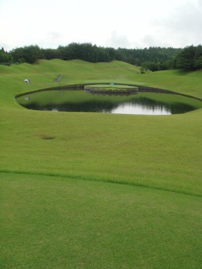 新陽CC・手ごわいコース・・・池には大きな金魚が!