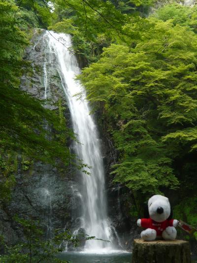 久しぶりに行った日本の滝百選 『箕面の滝』