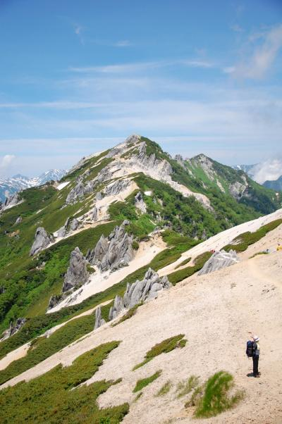 雷鳥に出会えた燕岳登山