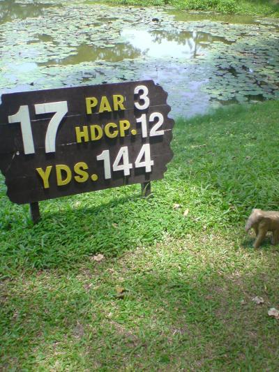 バンプラでゴルフ