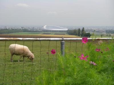 羊が丘は眺望の良いすばらしい展望地です