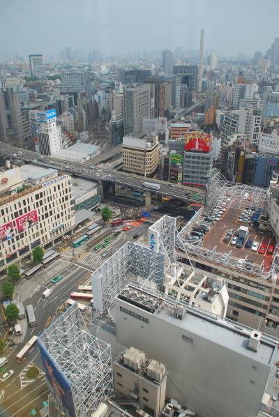 空からの眺め、渋谷でランチ