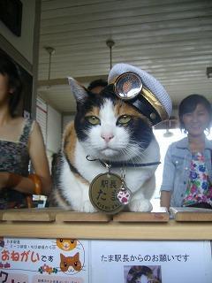 猫の駅長「たま」に会いに行ってきました