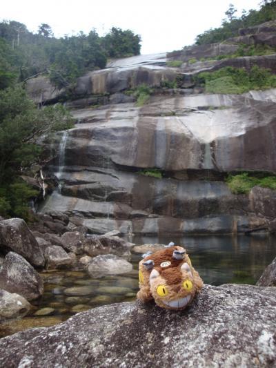 2008年8月3回目の屋久島?「蛇之口の滝で泳ぐ!尾之間温泉でザ・ガマン!」