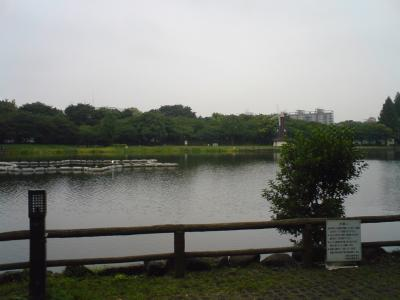 浮間公園の四季