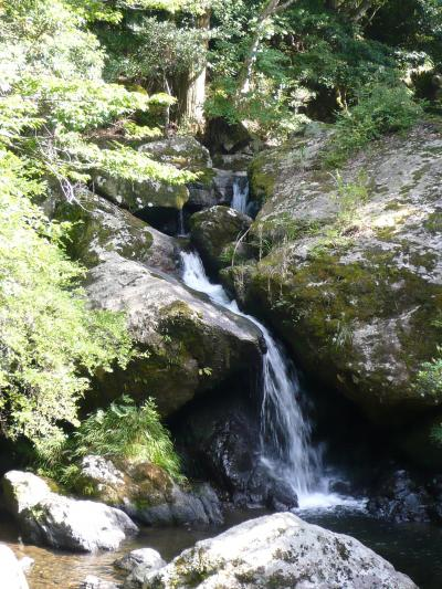 美しい渓流と苔むした岩 《るり渓》◆京都府南丹市園部町