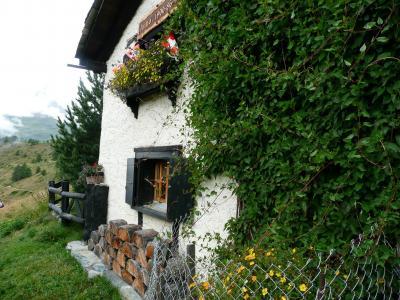 2008 スイス夏のハイキング その5「スネガ−ツェルマット」