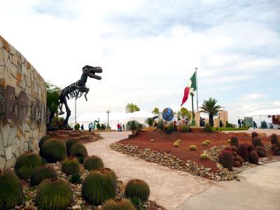 2008!!VIVA MEXICO!!と叫んでみた:コアウィラ州(2)