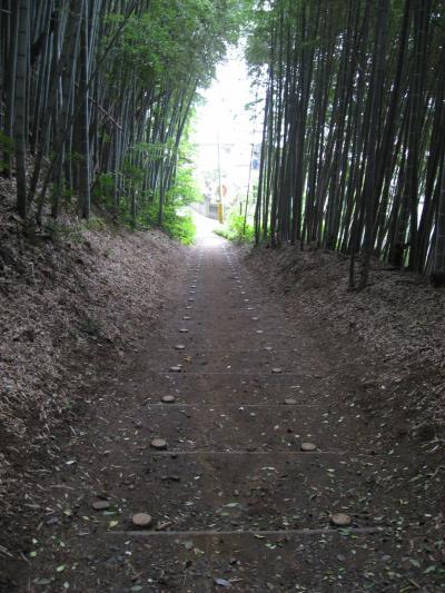 佐倉散歩♪
