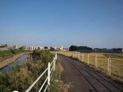 神奈川 境川サイクリングロード