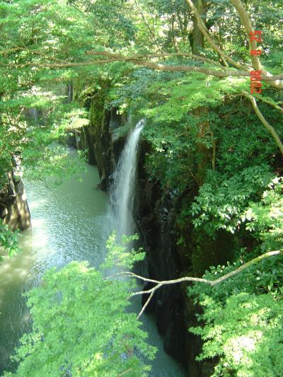 高千穂峡散策 温泉三昧の旅:番外編