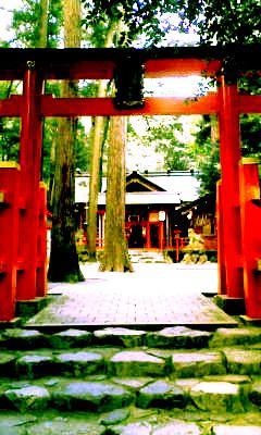 椿大神社へお参り