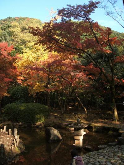 紅葉と美しい町並み 龍野