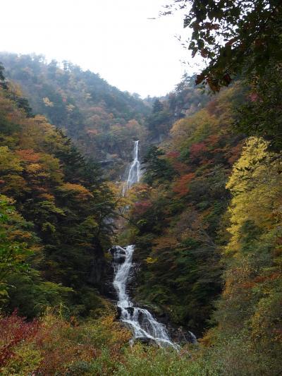 山梨県の滝めぐり◆日本の滝百選『精進ケ滝』の紅葉
