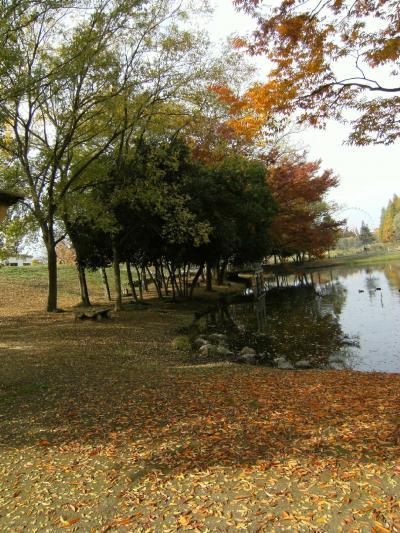 里の秋(動物公園周辺)