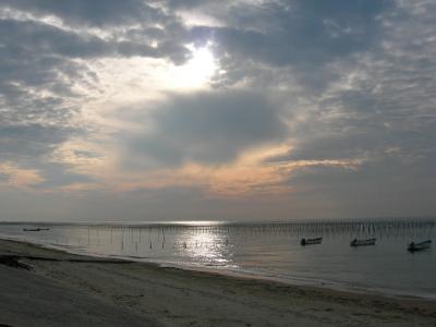 ゚*★美浜の海岸にて海鮮BBQ★*゚