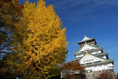 大阪城で銀杏見物